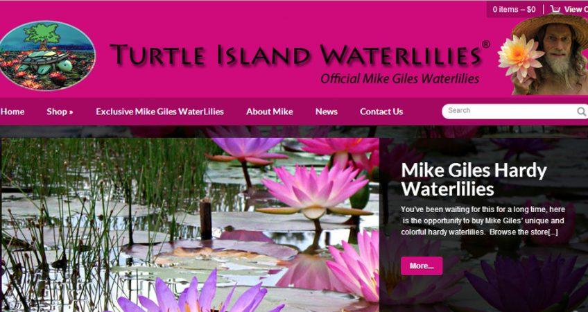Functional eCommerce Websites